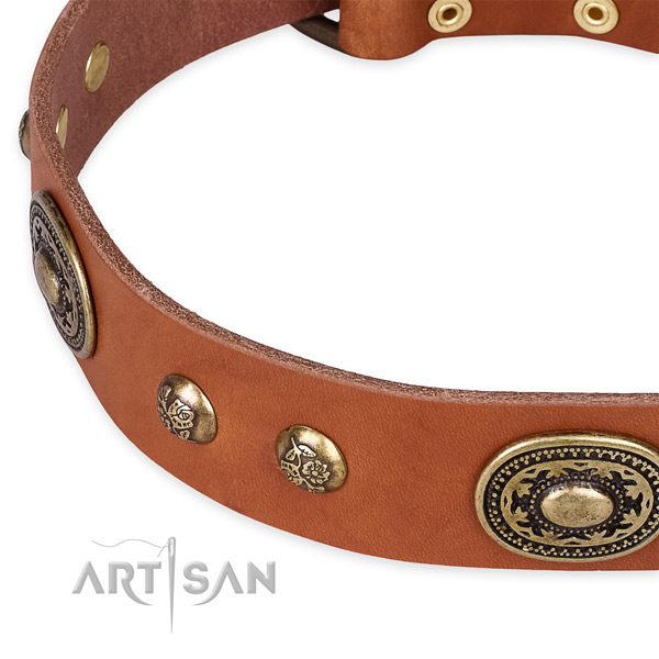 Comfortable full grain genuine leather collar for your impressive four-legged friend