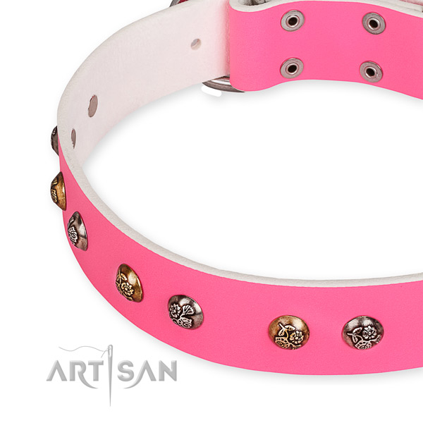 Full grain leather dog collar with impressive durable adornments