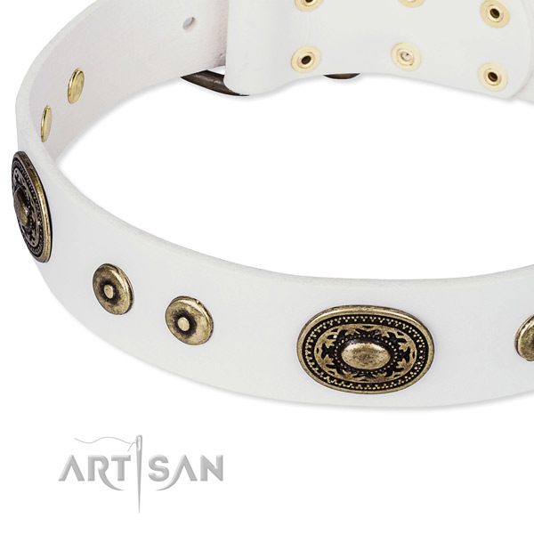 Full grain leather dog collar made of reliable material with studs