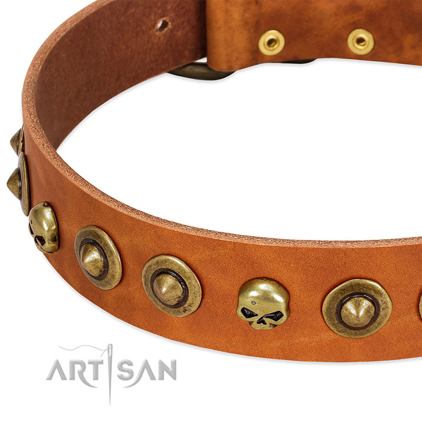 Stylish design adornments on full grain genuine leather collar for your four-legged friend
