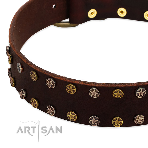 Comfortable wearing full grain genuine leather dog collar with stunning adornments