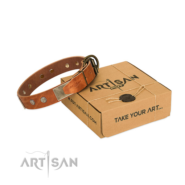 Rust-proof traditional buckle on dog collar for handy use