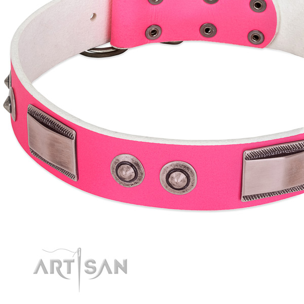 Extraordinary leather collar with decorations for your canine