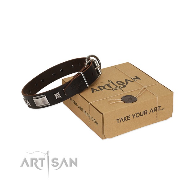 Stylish collar of full grain natural leather for your lovely canine