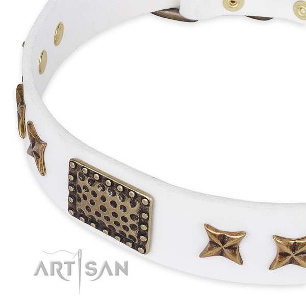 Genuine leather collar with reliable hardware for your impressive pet