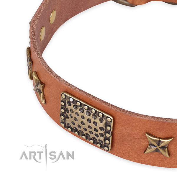 Natural genuine leather collar with corrosion resistant hardware for your attractive four-legged friend