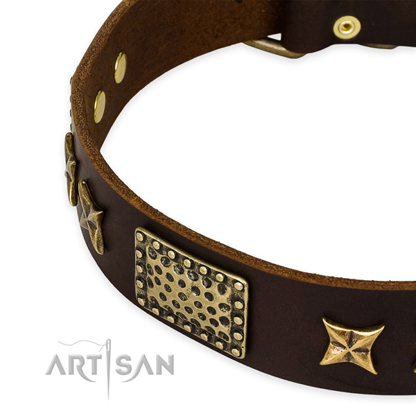Natural genuine leather collar with reliable fittings for your attractive canine