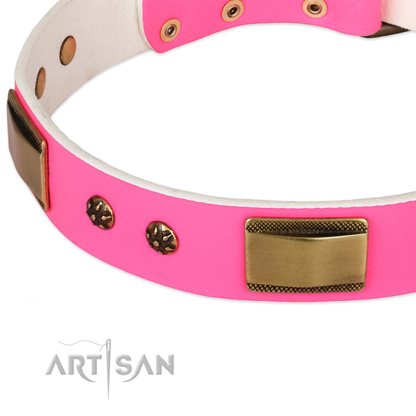 Corrosion proof fittings on leather dog collar for your pet