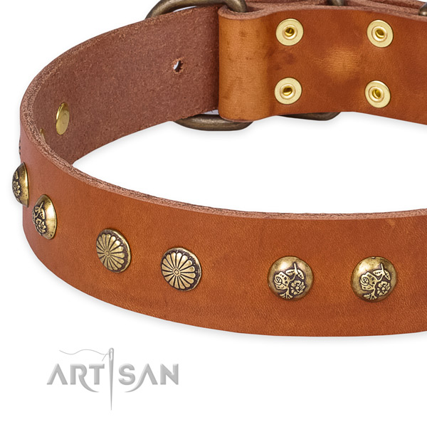 Full grain genuine leather collar with strong D-ring for your attractive dog