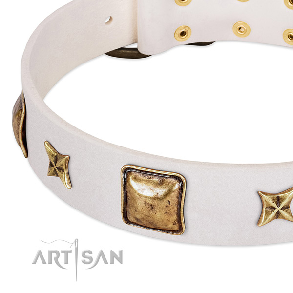 Corrosion proof adornments on leather dog collar for your canine