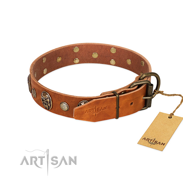 Strong hardware on full grain natural leather collar for basic training your four-legged friend