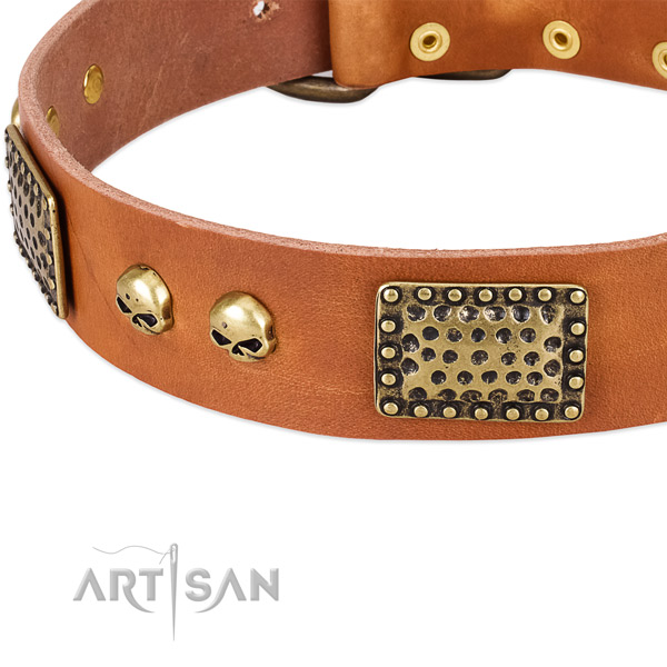 Rust resistant hardware on leather dog collar for your pet