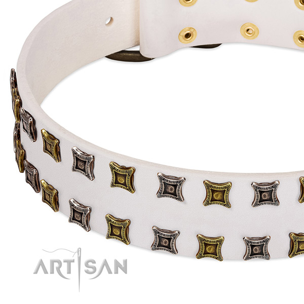 Quality leather dog collar for your beautiful doggie