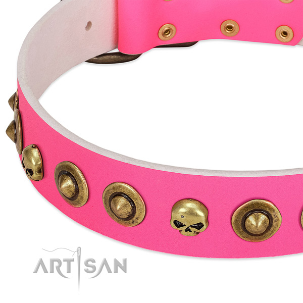 Fashionable studs on natural leather collar for your dog