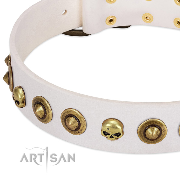 Significant adornments on natural leather collar for your doggie