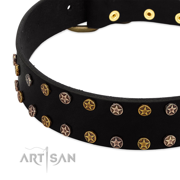 Amazing embellishments on leather collar for your four-legged friend