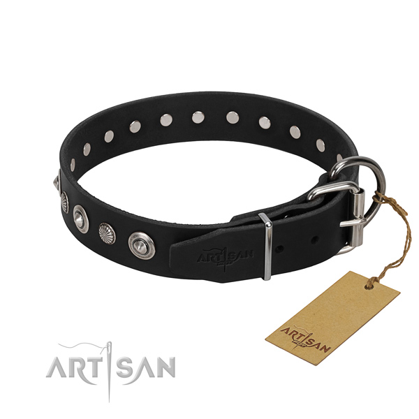 Best quality full grain natural leather dog collar with incredible adornments