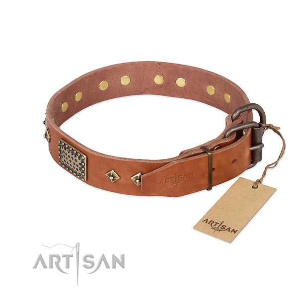 Leather dog collar with durable fittings and embellishments
