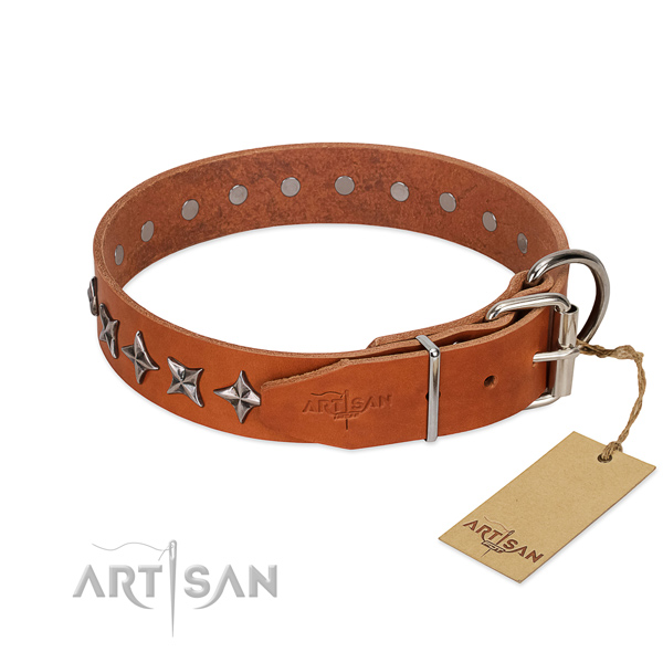 Everyday walking studded dog collar of top notch genuine leather