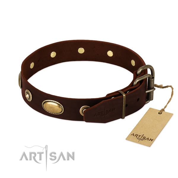 Durable studs on natural leather dog collar for your four-legged friend