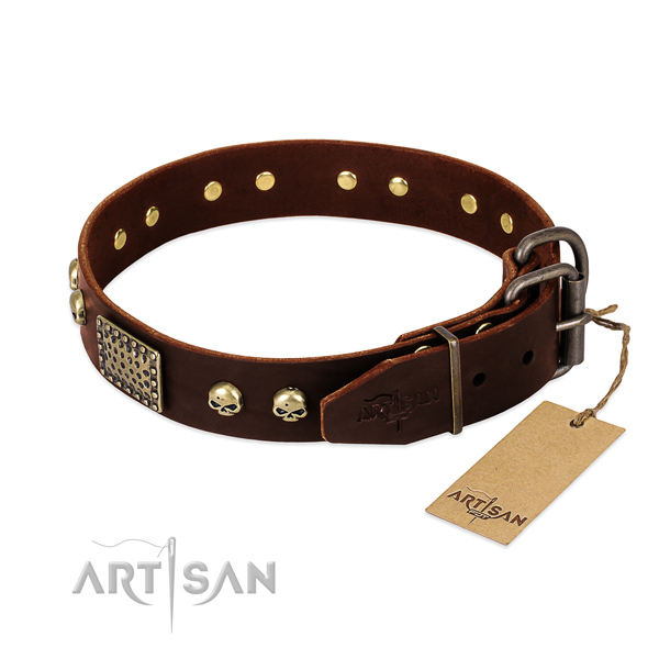 Durable studs on handy use dog collar