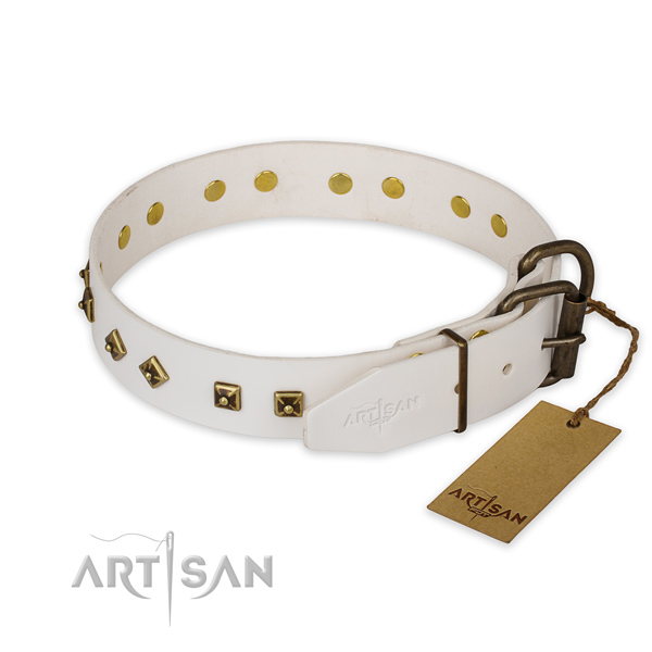 Strong hardware on leather collar for everyday walking your four-legged friend