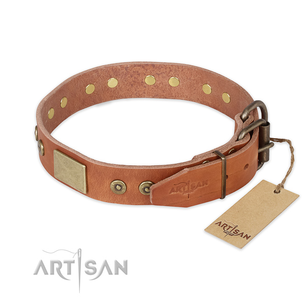 Corrosion resistant fittings on leather collar for daily walking your four-legged friend