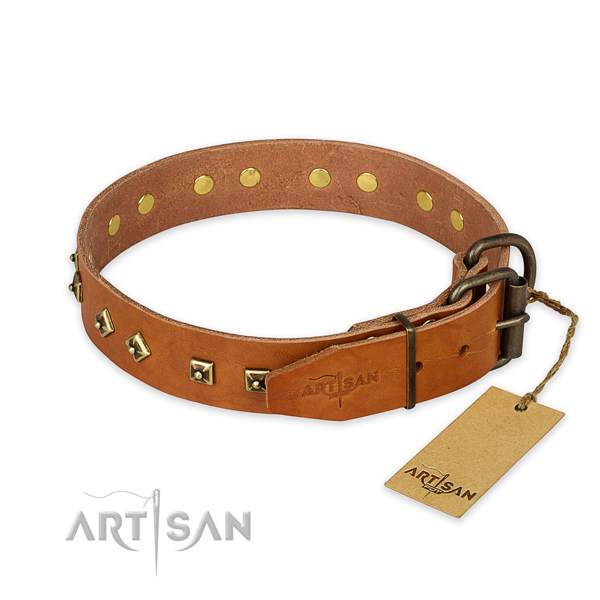Rust-proof D-ring on leather collar for everyday walking your doggie