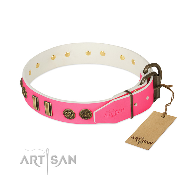 Corrosion resistant adornments on genuine leather dog collar for your doggie