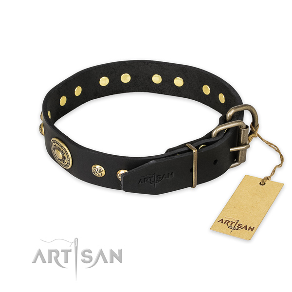 Durable buckle on genuine leather collar for everyday walking your pet