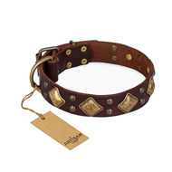 """Golden Square"" FDT Artisan Brown Leather Mastiff Collar with Large Squares"