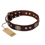"""Breath of Elegance"" FDT Artisan Decorated with Plates Brown Leather Mastiff Collar"