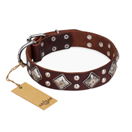 """King of Grace"" FDT Artisan Stylish Leather Mastiff Collar with Old Silver-Like Plated Decorations"