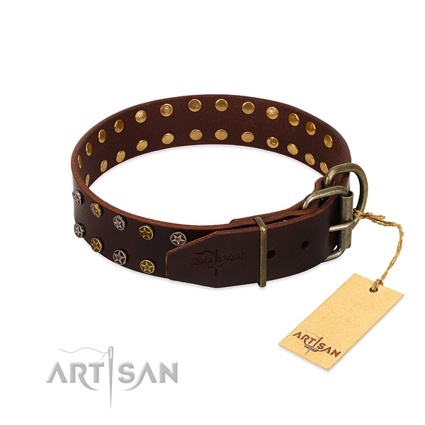Walking natural leather dog collar with incredible embellishments