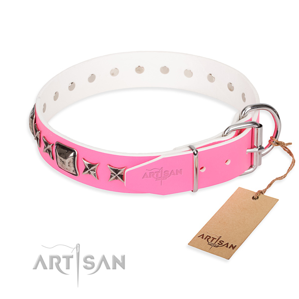 Top quality decorated dog collar of genuine leather