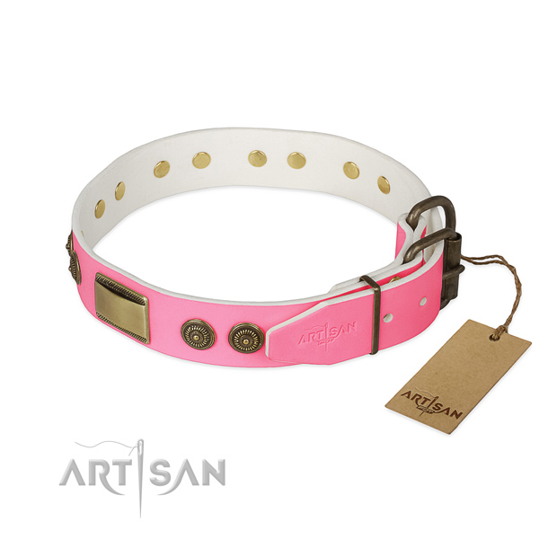 Reliable decorations on easy wearing dog collar