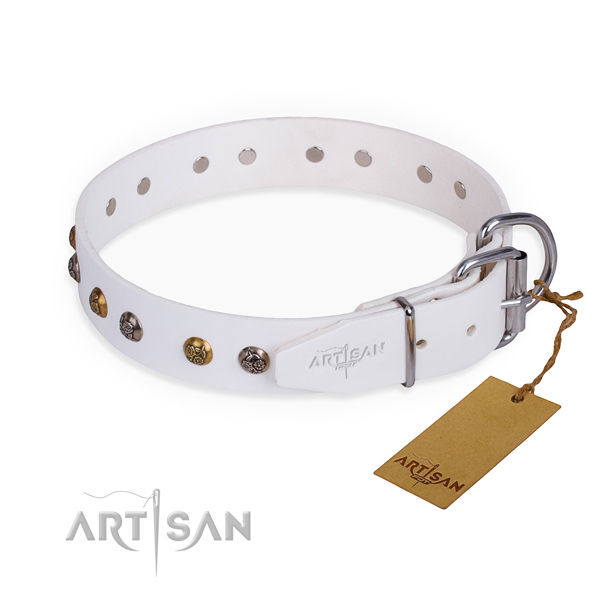 Leather dog collar with extraordinary corrosion resistant adornments
