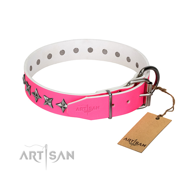 Reliable leather dog collar with unique studs