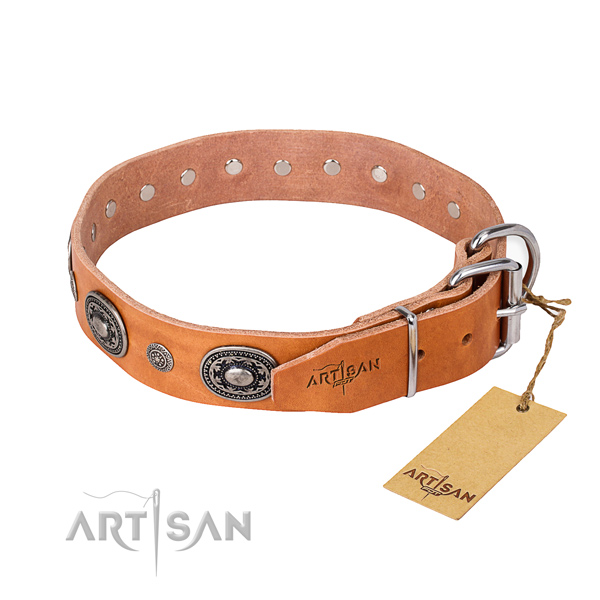 Quality leather dog collar made for everyday use
