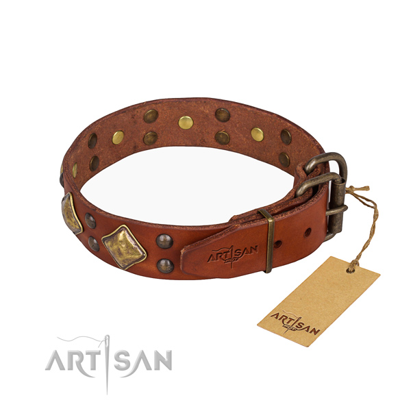 Full grain natural leather dog collar with amazing rust-proof adornments
