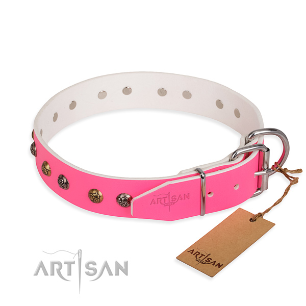 Leather dog collar with unique durable studs