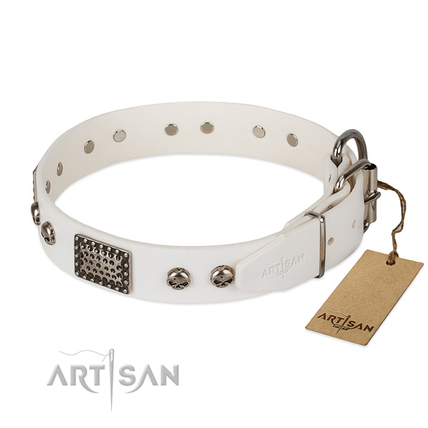 Corrosion resistant embellishments on basic training dog collar