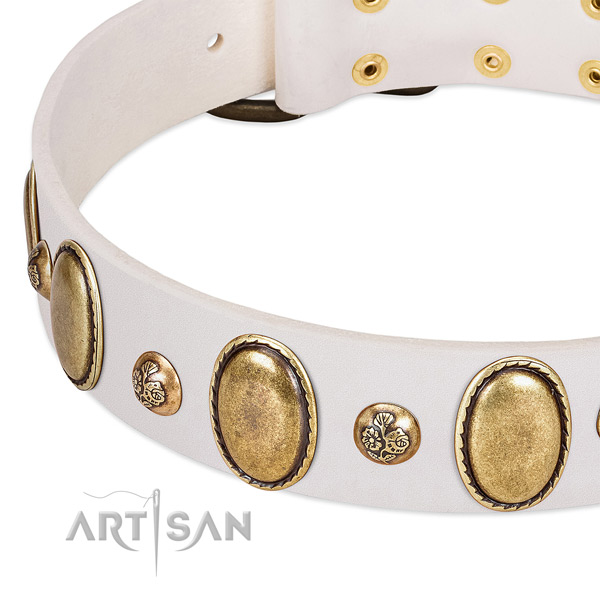 Genuine leather dog collar with exceptional studs
