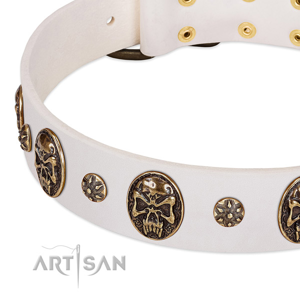 Durable studs on natural genuine leather dog collar for your canine