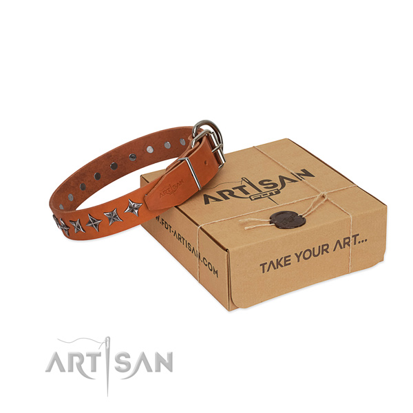 Easy wearing dog collar of finest quality full grain natural leather with studs