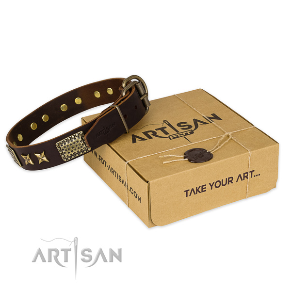 Rust-proof hardware on leather collar for your stylish dog