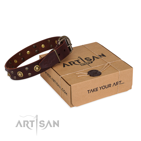 Rust-proof traditional buckle on leather collar for your attractive dog
