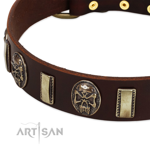 Strong buckle on full grain genuine leather dog collar for your four-legged friend