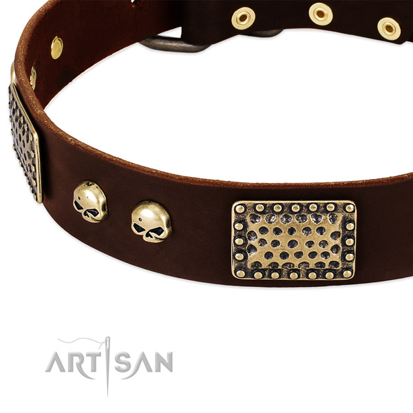 Rust resistant embellishments on leather dog collar for your dog