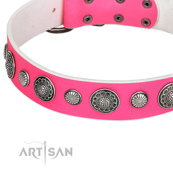 Leather collar with durable traditional buckle for your attractive pet
